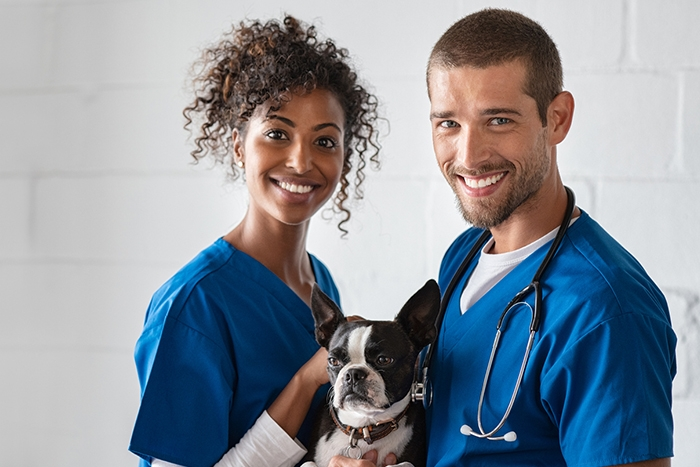 Veterinarian and her assistant holding a dog